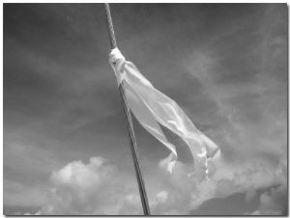 white-flag-21