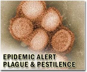 epidemics-spix-lg