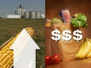 food-prices