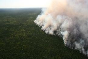 Honey Prairie Fire 4_30_11 1851 IMG_0558