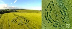 crop circle hampshire UK 2014