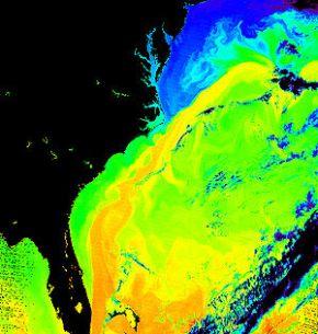 300px-Gulf_Stream_water_temperature